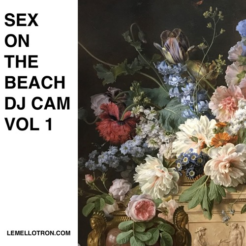 Sex beach cam