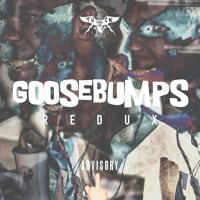 GOOSEBUMPS • REDUX • freestyle