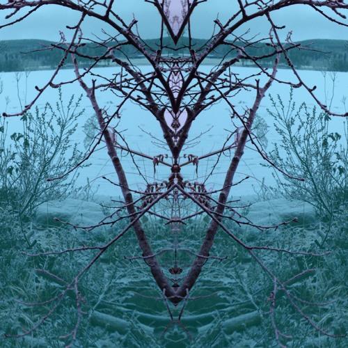 The Deer Tracks - Gossip + Remixer
