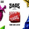Sage The Gemini - Now & Later (Paul Gannon Bootleg) [Free Download]