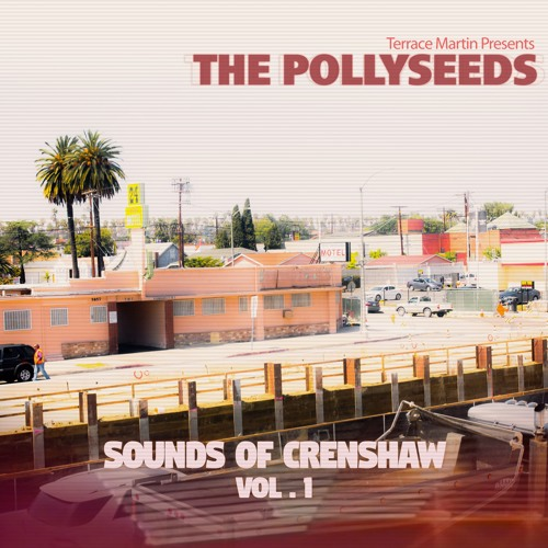 The Pollyseeds - Intentions (feat. Chachi)