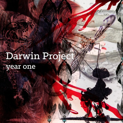 Darwin Project Year One