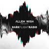 DarkFlight Radio 17