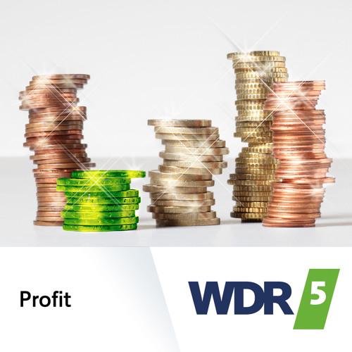 Fahrrad(un)freundliche Städte und Gemeinden in WDR 5 Profit (19.05.2017)