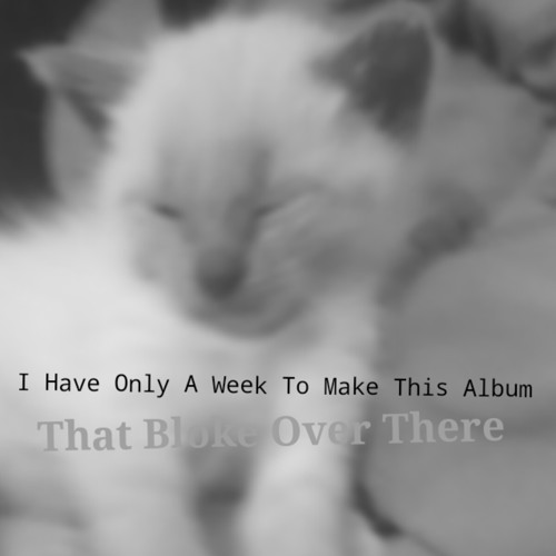 I Have Only A Week To Make This Album