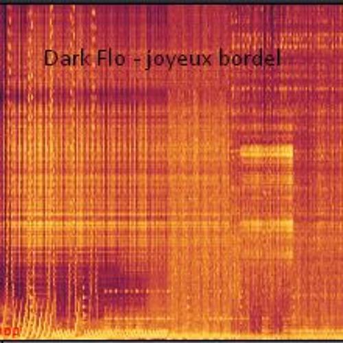 Dark Flo - joyeux bordel