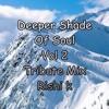 Deeper Shade Of Soul Vol 2 ( Tribute mix Rishi K )