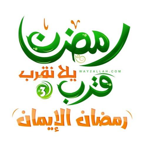رضيت بالله - الشيخ أمين الأنصاري