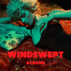 Johnny Jewel - Windswept (Acrone Re-vision)