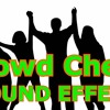 Crowd Cheers Cheering Audience SOUND EFFECT  Freesoundwith Download Link