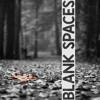 Blank Spaces (Original Mix)