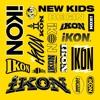 iKON - 벌떼 (B-DAY)