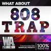 808 Trap | 1,5 GB Of Kits, Serum / Massive Presets & Samples