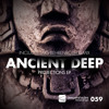 Ancient Deep - Everything Means Nothing (Lars Behrenroth Remix)[Deeper Shades Recordings]