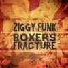 Ziggy Funk - Boxer's Fracture