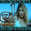 Calvin Harris & Disciples - How Deep Is Your Love (Dejewoo Remix)
