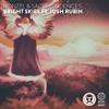 Ronzel & Sacred Sciences - Bright Skies ft. Josh Rubin