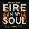 Fire In My Soul - Walk off the Earth (Exency & Maceo Rivas Remix)