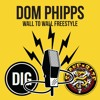 Dom Phipps 'Wall To Wall Freestyle'  - DIG BMX X SNAKEBITE Podcast
