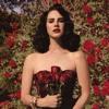 Roses Lana Del Rey