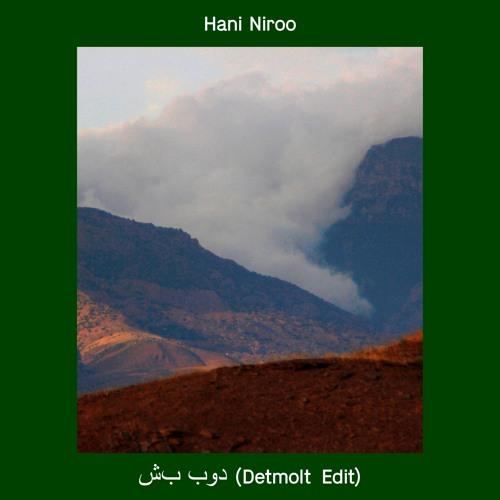 Hani Niroo - شب بود (Detmolt Edit)