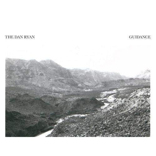 The Dan Ryan - Guidance