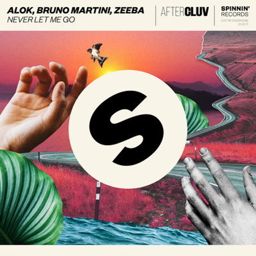 Baixar NEVER LET ME GO - Alok ft. Bruno Martini e Zeeba (GabzyBootleg)