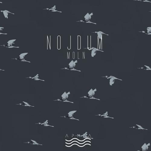 Nojdum - Moln [APNEA10] (preview)