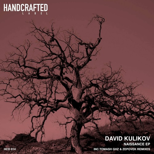 David Kulikov - Naissance (Tomash Ghz Remix)