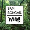 Sam Songar - Why!