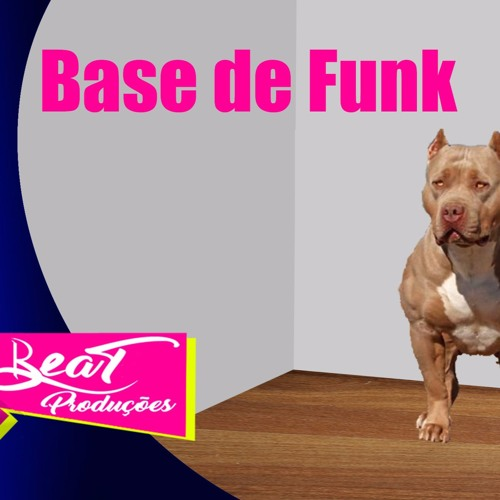 Base De Funk As Cadelas