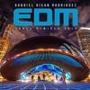2014 EDM Dance Remixes - DJ Gabriel Rican