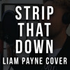 Strip That Down Lee Brown Liam Payne Cover Mp3