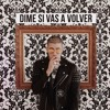 Bad Bunny Dime Si Vas A Volver Audio Oficial Mp3