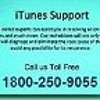 How to fix iTunes Error 11 on Windows and Mac?