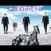 GREYHOUND - Swedish House Mafia ( Aldo Rework )