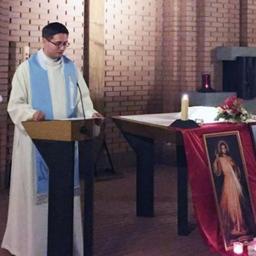 Maria, die Mutter Gottes #zueri17 - Pater Lukas Nowak MS