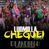ludmilla chegueidj andrego remix free download full version