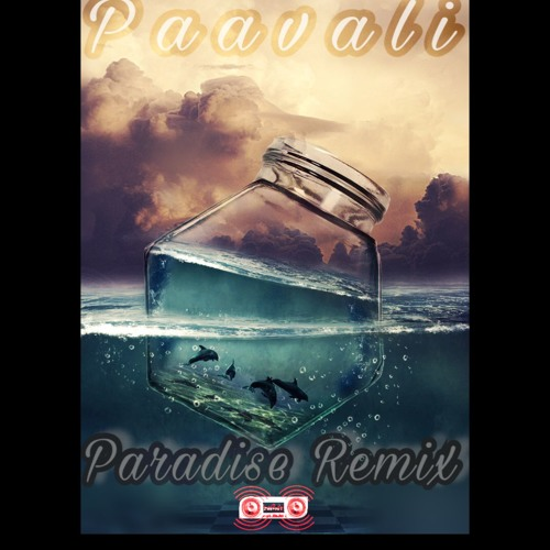 Paradise Remix - Paavali