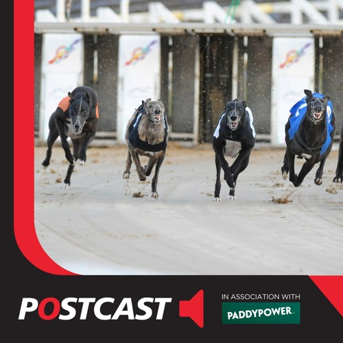 Postcast Greyhound Derby  By Racing Post Free Listening On Soundcloud