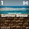 Monthly Mix June '17 | MM - Summer Breeze | 1daytrack.com
