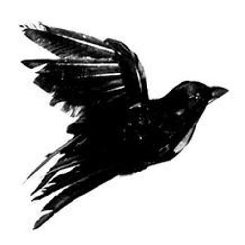 alto Islas del pacifico Marty Fielding  Black bird' cover (Fat Freddy's Drop / Jordan Rakei) by Jillis Pieters