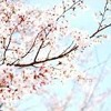 j^p^n - bloom. [] (Only 1st part)