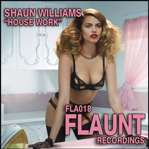 Shaun Williams - House Work (sample)