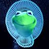 Kermit The Frog - Redbone