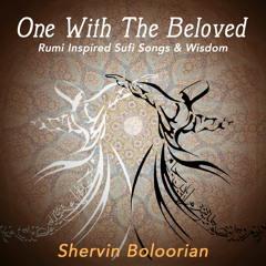 Shervin Boloorian - Baza