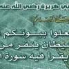 سورة البقرة بصوت الشيخ محمد صديق المنشاوي