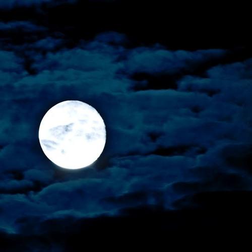 Icewind - Ivory Moon