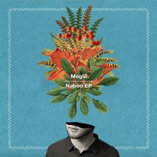 Moglii