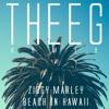 Beach In Hawaii (THEEG remix)